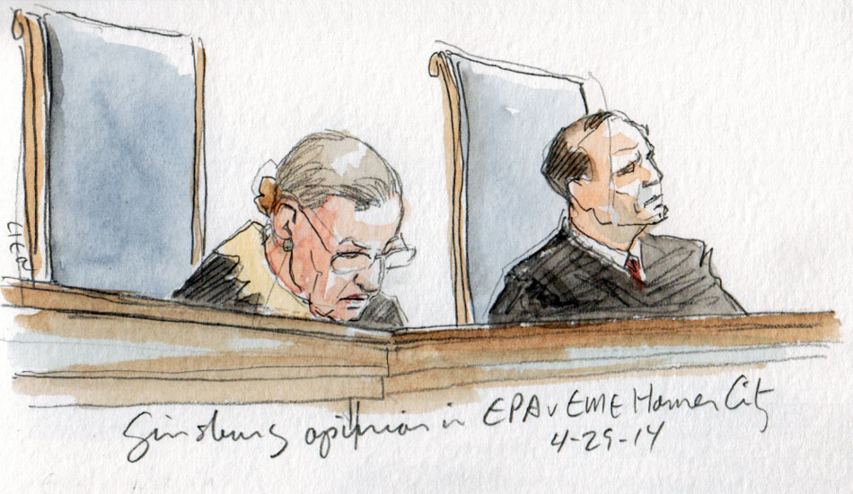 Justice Ginsburg announces the opinion of the Court. (Art Lien)